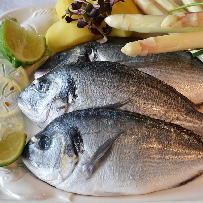pescado-445